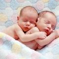 Вагітність двійнятами: як завагітніти, як проходить вагітність