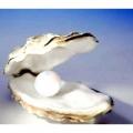 MAYSAKU прикраси з перлів і біжутерія