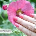 Святковий місячний манікюр з рожевим лаком: покроковий урок з фото