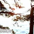 Як відпочити недорого за кордоном - досвід туриста поїздка до Хорватії